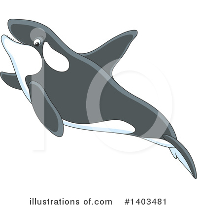 Orca Clipart #1403481 by Alex Bannykh