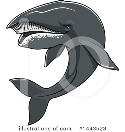Whale Clipart #1443523 by Vector Tradition SM
