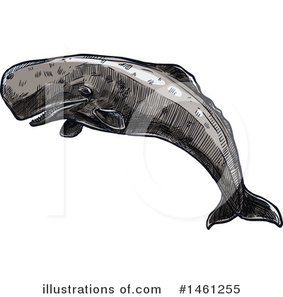 Whale Clipart #1461255 by Vector Tradition SM