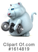 White Cat Clipart #1614819 by Julos