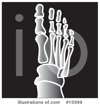 Foot Clipart #15999 by Andy Nortnik