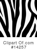 Royalty-Free (RF) Zebra Clipart Illustration #14257