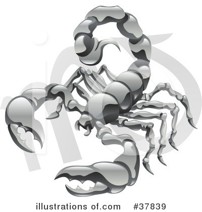 Scorpion Clipart #37839 by AtStockIllustration