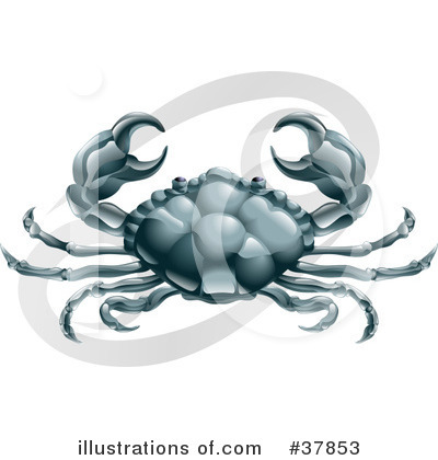 Crab Clipart #37853 by AtStockIllustration