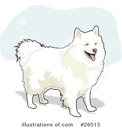 Royalty-Free (RF) American Eskimo Dog Clipart Illustration by David Rey - Stock Sample #26515