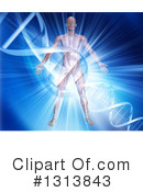 Anatomy Clipart #1313843 by KJ Pargeter
