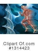 Anatomy Clipart #1314423 by KJ Pargeter