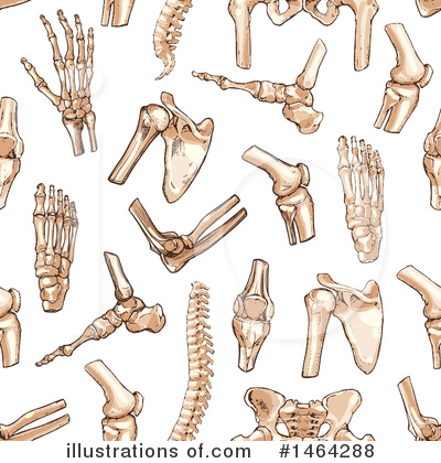 Anatomy Clipart #1464288 by Vector Tradition SM