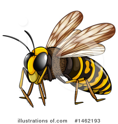 Bee Clipart #1462193 by Graphics RF