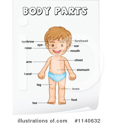 My body | Teaching Resources