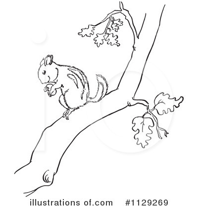 Chipmunk Clipart #1129269 - Illustration by Picsburg