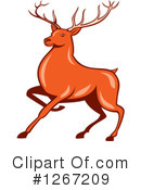 Deer Clipart #1267209 by patrimonio