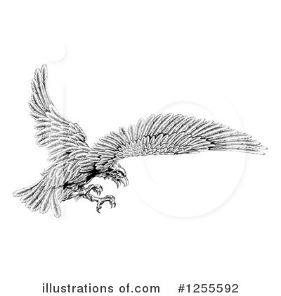 Bald Eagle Clipart #1255592 by AtStockIllustration