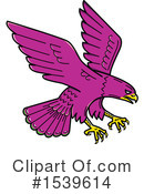 Falcon Clipart #1539614 by patrimonio