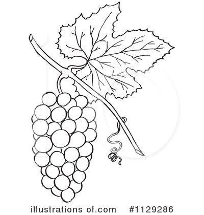 grapes clipart black and white. royalty-free (rf) grapes clipart illustration #1129286 by picsburg black and white