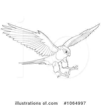 Cartoon Hawk Clipart | Free Images at Clker.com - vector clip art online,  royalty free & public domain