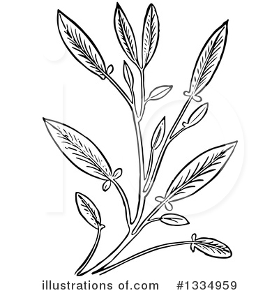 Herb Clipart #1334959 by Picsburg