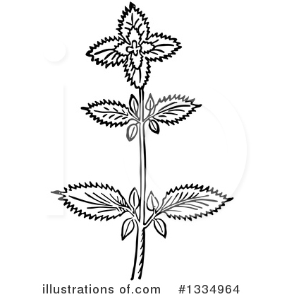 Herb Clipart #1334964 by Picsburg