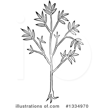 Herb Clipart #1334970 by Picsburg