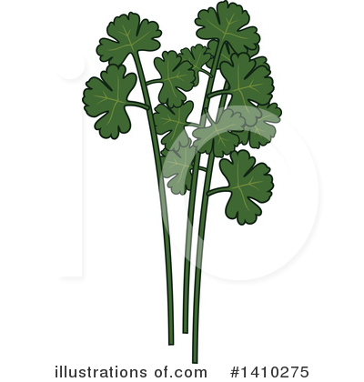 Herbs Clipart #1410275 by Vector Tradition SM