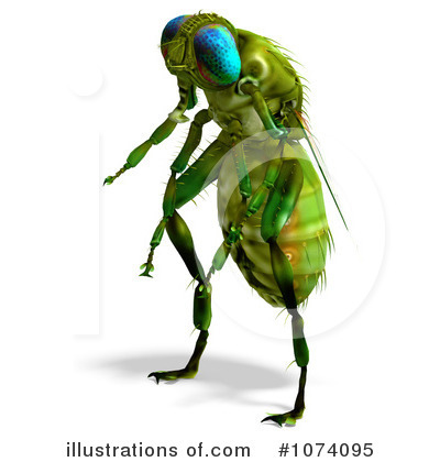 House Fly Clipart #1074095 - Illustration by Ralf61