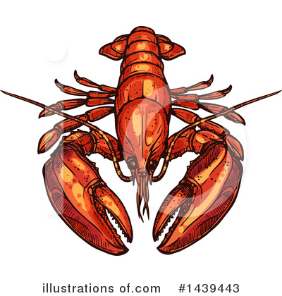 Lobster Clipart #1439443 by Vector Tradition SM