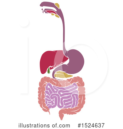 Digestion Clipart #1524637 by AtStockIllustration