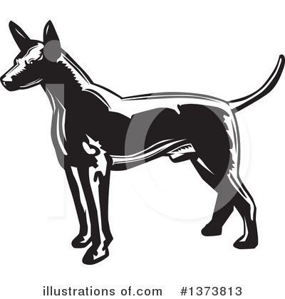 Mexican Hairless Dog Clipart #1373813 by David Rey