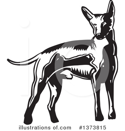 Royalty-Free (RF) Mexican Hairless Dog Clipart Illustration by David Rey - Stock Sample #1373815