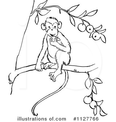 Monkey Clipart #1127766 by Picsburg