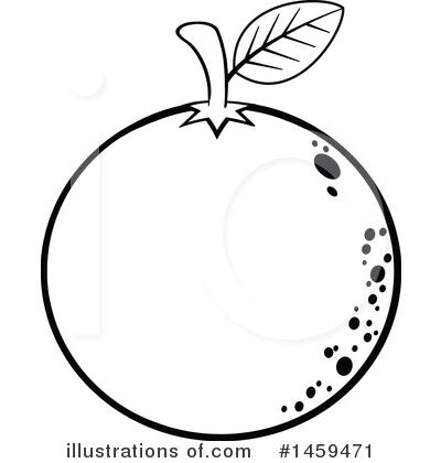 Navel Orange Clipart 1459471