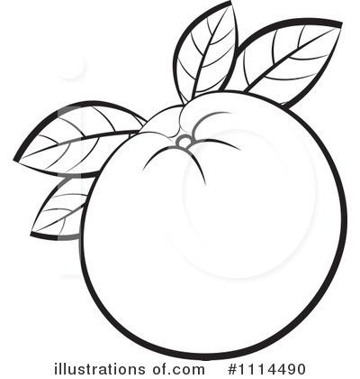 Oranges Clipart 1114490