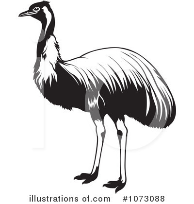 Clip Art Ostrich Clipart ostrich clipart 1073088 illustration by dero royalty free rf dero
