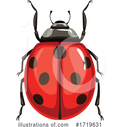 Ladybug Clipart #1719631 by Vector Tradition SM