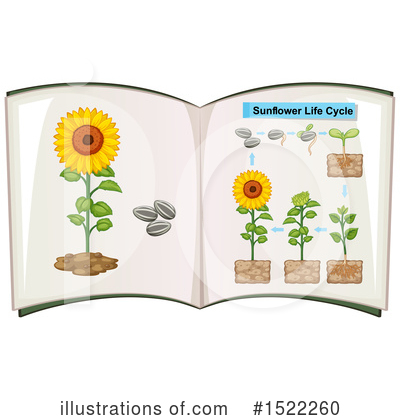 Sunflower Clipart #1522260 by Graphics RF