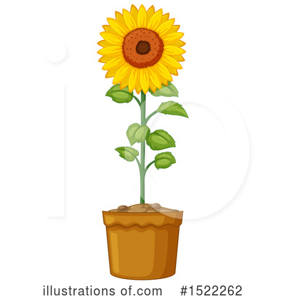Sunflower Clipart #1522262 by Graphics RF