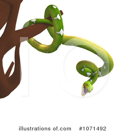 Python Clipart #1071507 - Illustration by Ralf61