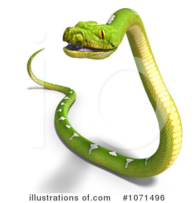 Python Clipart #1071504 - Illustration by Ralf61