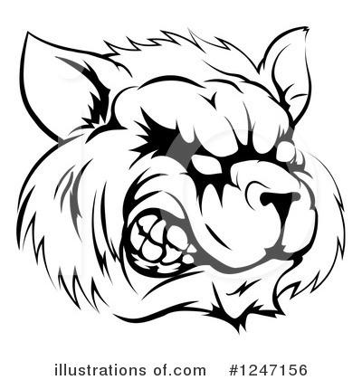 Raccoon Clipart 1247156