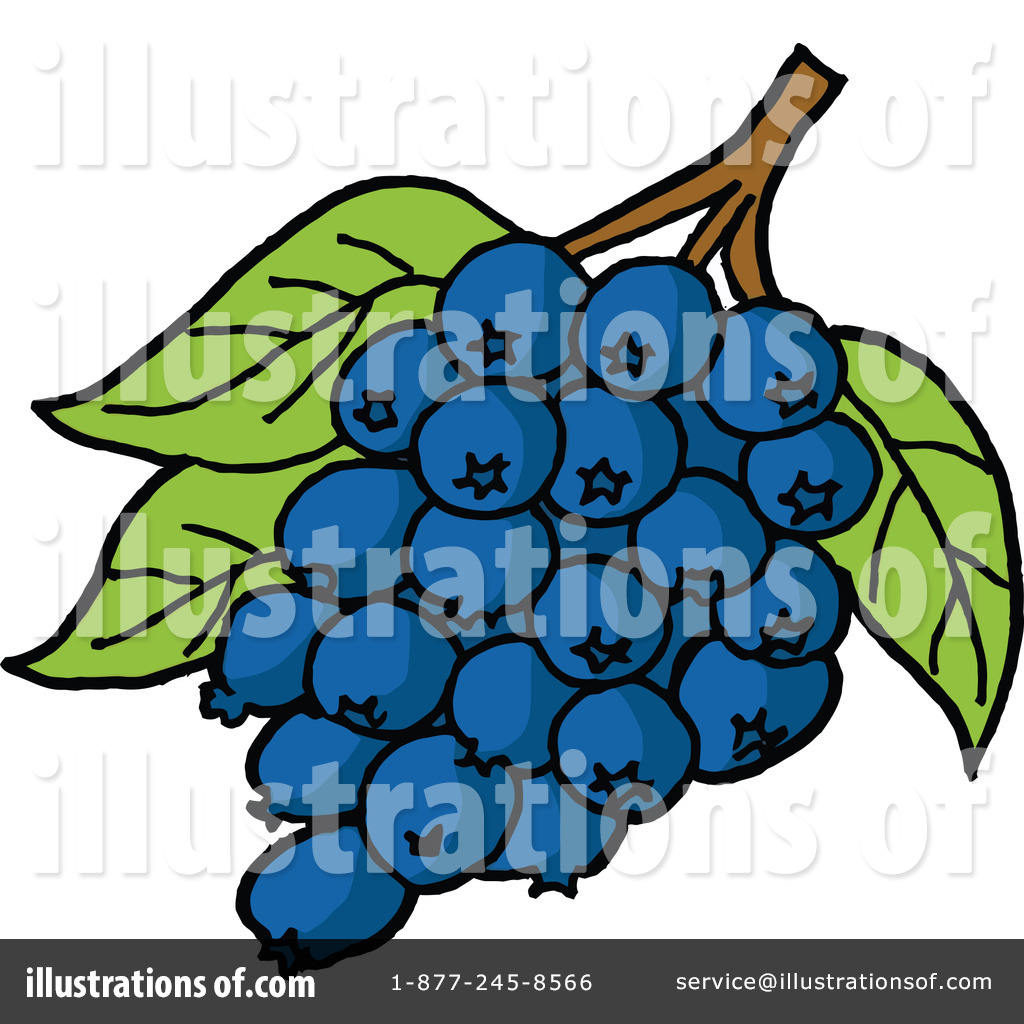 Blueberries Clipart #1083368 - Illustration by LaffToon
