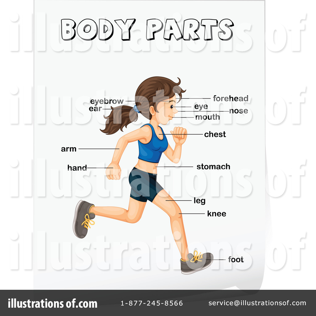 Body Parts Clipart #1140630 - Illustration by colematt