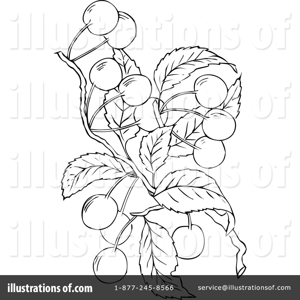 Botanical art coloring book - Royalty Free Rf Botanical Clipart Illustration 1113808 By Prawny Vintage