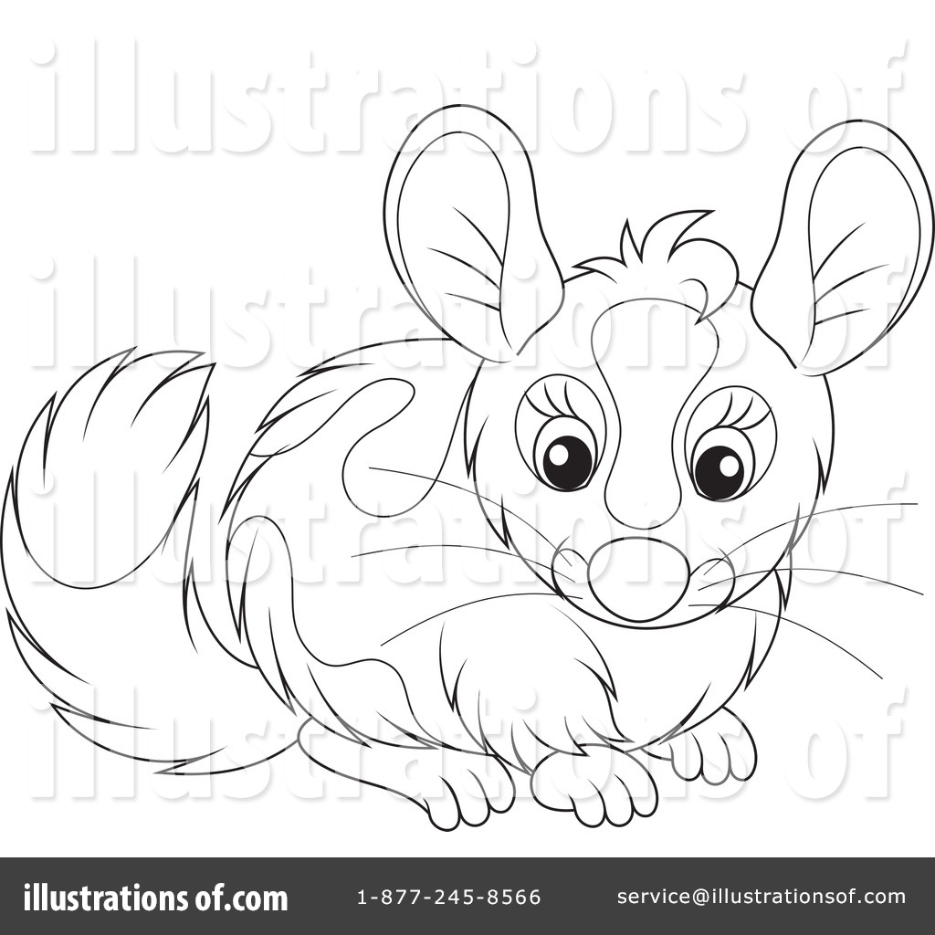 Royalty Free (RF) Chinchilla Clipart Illustration #1199667 By Alex Bannykh