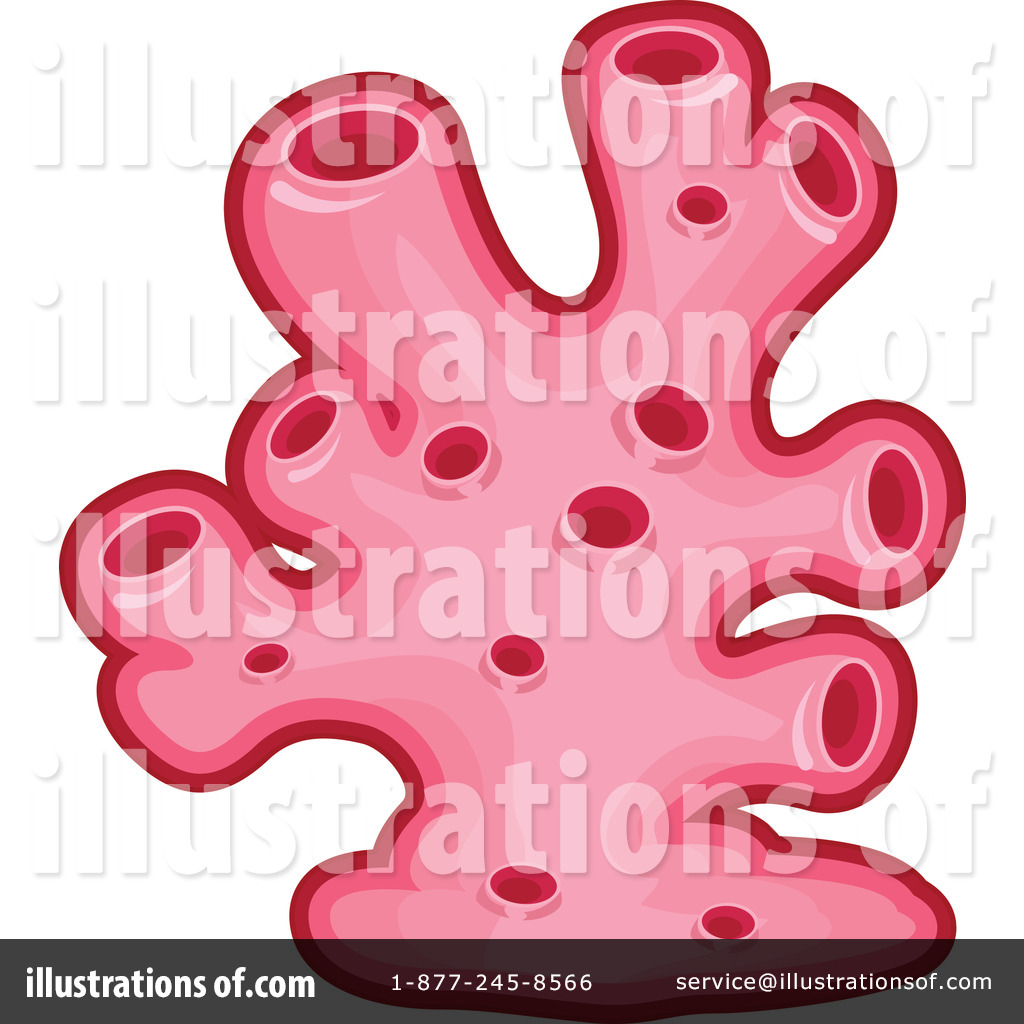 Clip Art Coral Clipart coral clipart 1279246 illustration by bnp design studio royalty free rf stock sample