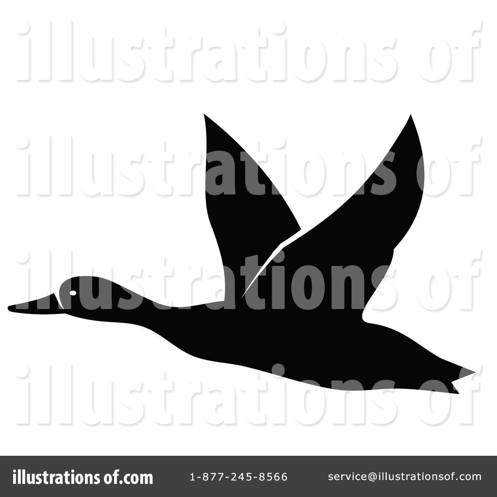 108 Loons Illustrations, Royalty-Free Vector Graphics & Clip Art - iStock