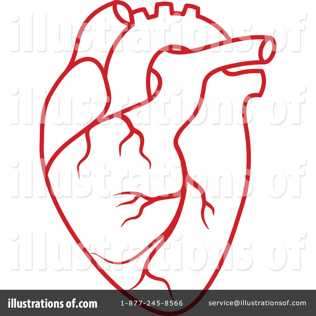 Heart stock illustration royalty free illustrations stock clip art - Royalty Free Rf Human Heart Clipart Illustration By Vector Tradition Sm Stock