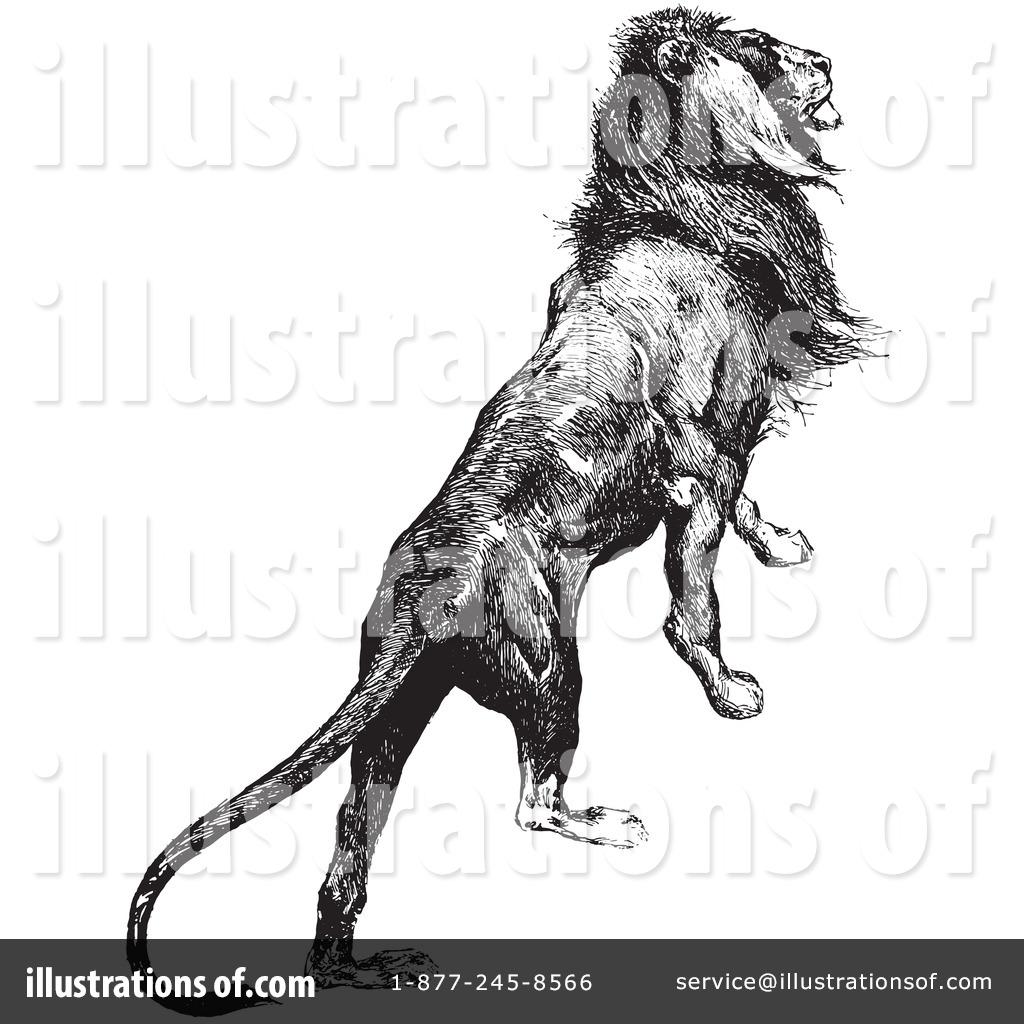 Majestic Lion Stock Illustrations – 4,356 Majestic Lion Stock  Illustrations, Vectors & Clipart - Dreamstime