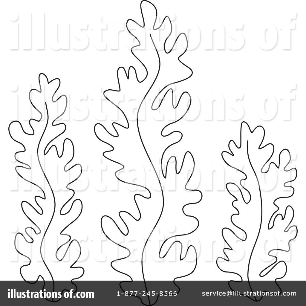Seaweed Clipart 1229261 Illustration
