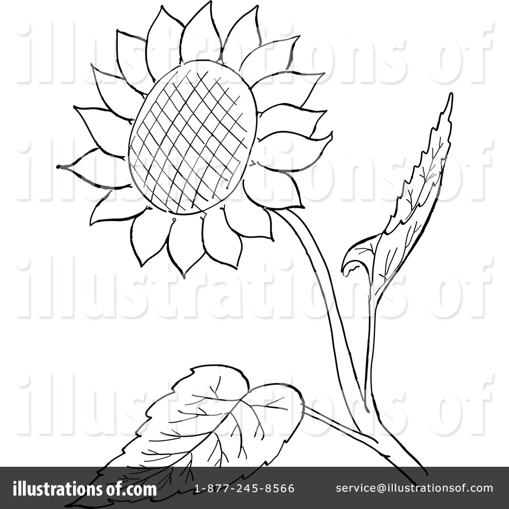 Sunflower Clipart #1127760 - Illustration by Picsburg for Clipart Sunflower Black And White  155sfw