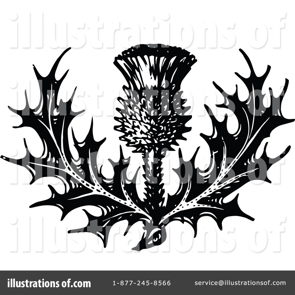 thistle clipart 1145935 illustration by prawny vintage rh illustrationsof com scottish thistle clipart free scottish thistle clipart